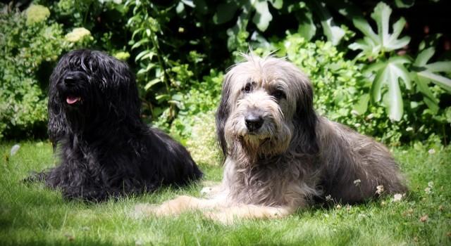 Chelsey en Bijoux